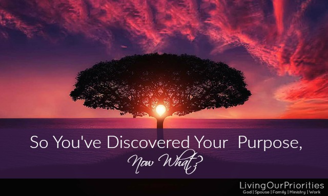 If you've wondered what on earth are you here for and discovered an answer; you may be wondering what do you do now. Follow these three things…